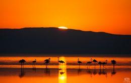 Gün Doğumunda Tuz Gölü