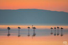 Tuz Gölü – Salt Lake